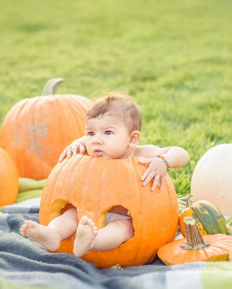 baby in pumpkin - Wonderful World of Bree