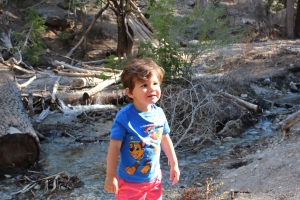 kid-friendly places to hike in Las Vegas