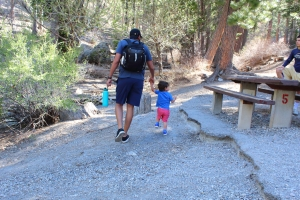 Deer Creek Picnic Area, Kid-Friendly Places to Hike